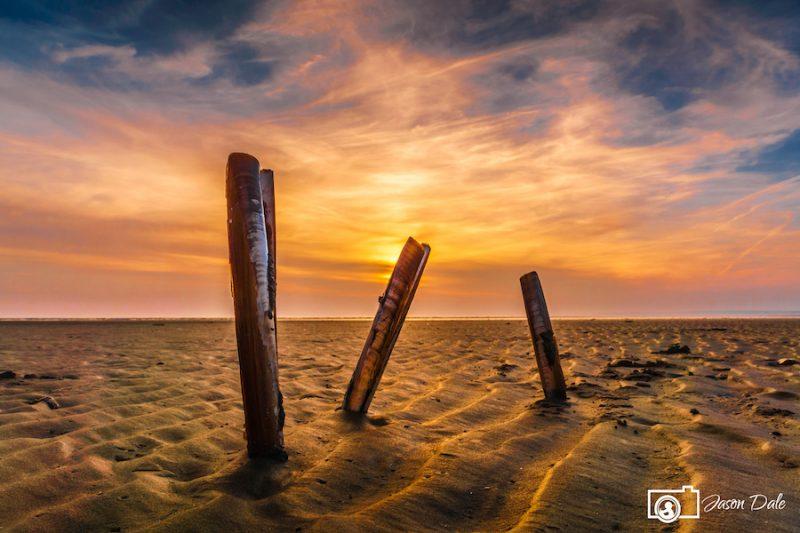 Cefn Sidan Sea Shells